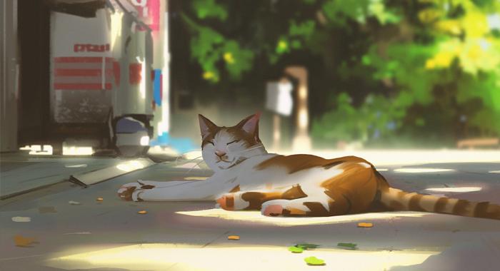Cómo dibujar un gato realista fácil paso a paso, Dibucorp