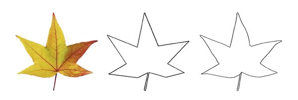 La Forma, primer elemento básico del dibujo, Dibucorp