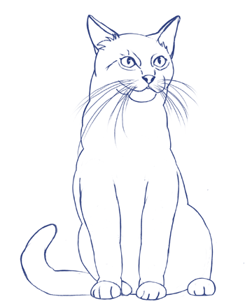 Cómo dibujar un gato paso a paso, Paso 7