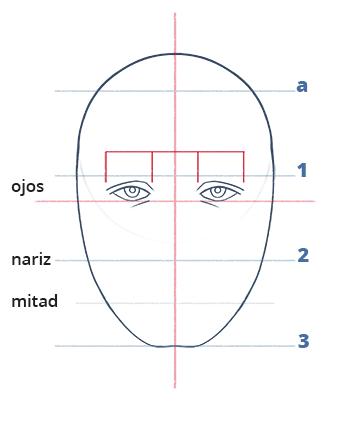 Cómo dibujar un rostro realista de frente fácil paso a paso, Paso 7