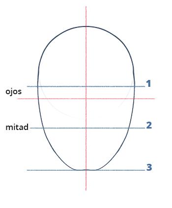 Cómo dibujar un rostro realista de frente fácil paso a paso, Paso 4