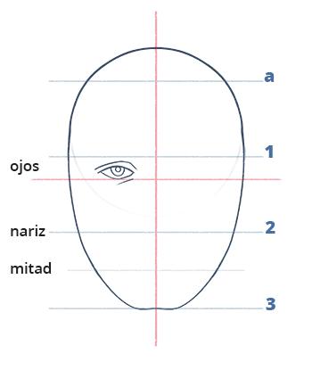 Cómo dibujar un rostro realista de frente fácil paso a paso, Paso 6