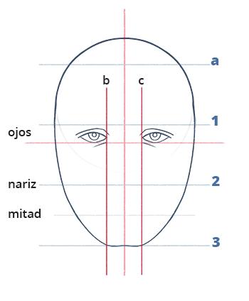 Cómo dibujar un rostro realista de frente fácil paso a paso, Paso 8.1