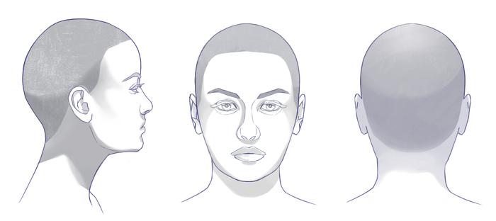 Cómo dibujar un cabello realista paso a paso, la forma del cabello, Dibucorp
