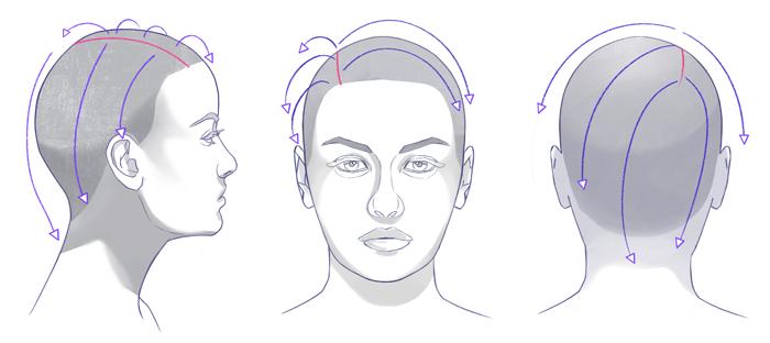 Cómo dibujar un cabello realista, dirección del cabello en el dibujo, Dibucorp
